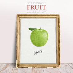Free Printable Fruit Collection - The Cottage Market Kitchen Wall Art, Kitchen Walls, Woodland Nursery Decor, Fruit Art, Bathroom Art, Animal Decor, Animal Nursery, Diy Wall Art, Printable Wall Art