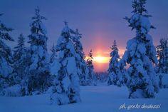 Saariselka. Lapland
