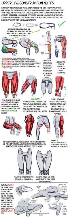 Thigh Construction Tutorial by N3M0S1S on deviantART http://n3m0s1s.deviantart.com/ - Follow the link http://n3m0s1s.deviantart.com/art/Thigh-Construction-Tutorial-440946818