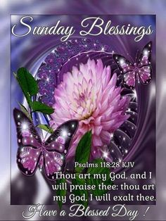 Sunday Blessings. Psalms 118:28 KJV Have a Blessed Day! Happy Thursday, Facebook, Friends, Nice Good Morning Images, Names, Sayings, Blessings, Beautiful Butterflies, Join