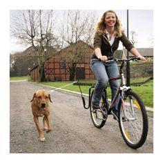 Springer Dog Exerciser