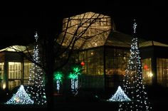 The Orchid Conservatory sparkles during Holidays at the Garden.