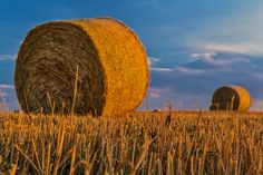 Bale, Straw, Agriculture, Harvest, Rural Landscape, Farm