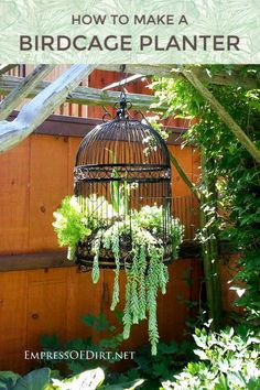 creative and unusual containers for the garden container gardening gardening raised garden beds repurposing upcycling succulents Old birdcages and succulents the perfect arrangement #