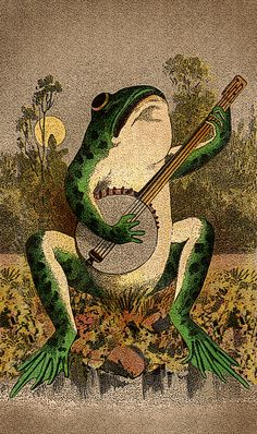 animals playing banjo - photo #15