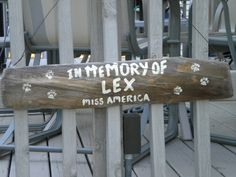I couldn't find a pet memorial so I made my own out of a piece of driftwood I had.