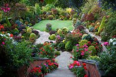 Balcony view of the late summer garden (Sept 12) | Flickr - Photo Sharing!