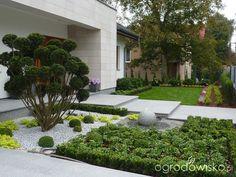 Przedogródek - strona 4 - Forum ogrodnicze - Ogrodowisko