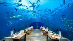 BEST LUXURIOUS HOTELS OF THE WORLD  Hydropolis Underwater Hotel  Hydropolis Underwater Hotel is located in the city of Dubai. It is the first luxurious hotel in the whole world. The Hydropolis Hotel was around 66 feet under the ground floor of the historical Persian Gulf.