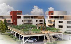 Un potager au-dessus d'un parking | Volterre | #basileek #Agriculture #urbaine