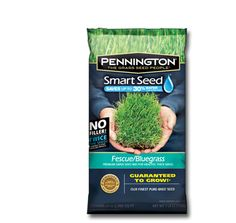 Pennington Smart Seed - Fescue Bluegrass