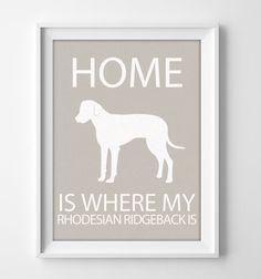 Deze 8 x 10 Rhodesian Ridgeback kunst aan de muur wordt afgedrukt met een briljante matte afwerking op 80# geweven linnen karton. Geïllustreerde hond prints maken unieke en gepersonaliseerde giften voor uw favoriete hondenliefhebber of nieuwe huiseigenaar. Rhodesian Ridgeback is een van de vele hondenrassen om uit te kiezen.  Kleur komt te staan is Cement. Op zoek naar een ander kleur of hond ras? Beide achtergrondkleur en hondenras kan worden aangepast aan elke voorkeur! Kies uit 20…