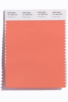 These Are The Colors To Watch For In The Spring '16 Collections #refinery29  http://www.refinery29.com/2015/09/93782/pantone-spring-2016-fashion-color-report#slide-10  If a peach falls in a forest, does it make a sound — an echo, specifically? These are the type of philosophical questions that Peach Echo (Pantone 16-1548) might make you ponder. The pinkish-orange hue makes its mark at Christian Siriano, Rebecca Minkoff, Dennis Basso, a...