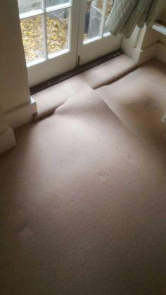 A new luxury wool carpet Brompton, Wool Carpet, Luxury, Wool Rug