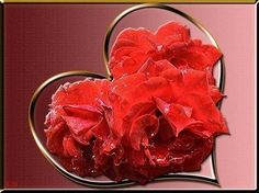 Heart Pictures, Photo Heart, Fish, Montages, Cloud, Youtube, Calla Lilies, Pictures, Musica