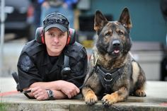 Interesting dog fact of the week: In Palding, Ohio, it is legal for a police officer to bite a barking dog to keep it quiet.