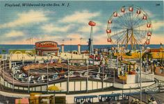 Wildwood by The Sea New Jersey NJ 1950s Amusement Park Ferris Wheel Postcard