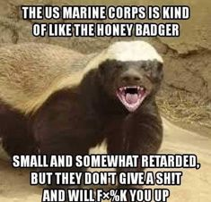 This guy fucks Marine Corps Quotes, Marine Corps Humor, Usmc Quotes, Us Marine Corps, Cowboy Quotes, Qoutes, Life Quotes, Funny Animal Memes, Funny Memes