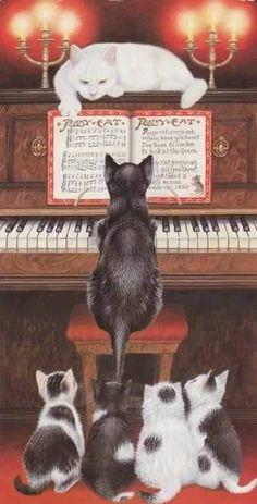 piano kitty | via Facebook | We Heart It