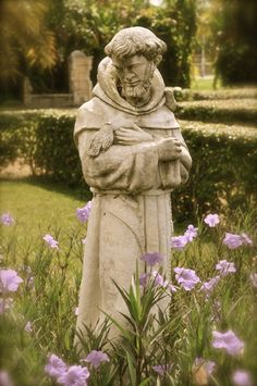Saint Francis ~ Photography by Stacey Greene