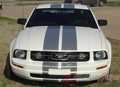 """2005 - 2009 Ford Mustang SV-6 V6 Racing and Lemans 10"""" Rally Stripes Vinyl Graphics 3M Decals"""