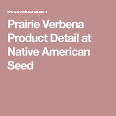 Prairie Verbena Product Detail at Native American Seed