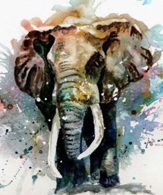 Dessin éléphants