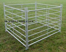 ALPACA / LLAMA / CALF HURDLES 6ft x12 new galvanised steel Cabras Boer, Llama Gifts, Hurdles, Galvanized Steel, Livestock, Agriculture, Outdoor Structures, Alpacas