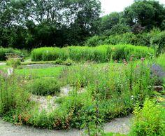 Chambers Wood Butterfly Garden
