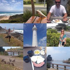 Day 1 of our Great Ocean Road-Trip! Scones at Aireys Inlet some yoga with a view a campsite by the river alongside our new feathery friends and some wine and cheese for happy hour! #perfect #greatoceanroadtrip #greatoceanroad #roadtrip #camping #coast #aireysinlet #lighthouse #erskineriver #lorne #australia #yoga #vrksasana #treepose #cockatoo #ducks #holiday @mikskelton by thefreeyogi http://ift.tt/1IIGiLS