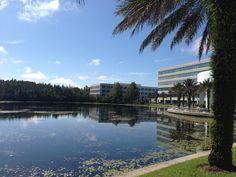 Tampa October morning