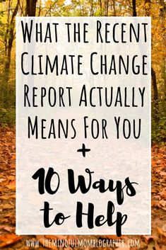 If the recent report from the ICPP on climate change has given you major climate change anxiety (like me), find out what the report actually means for you, and 10 solutions you can implement to help climate change (what you can do to help). Climate Change Report, Global Warming Climate Change, About Climate Change, What Is Climate, Green Living Tips, Carbon Footprint, Sustainable Living, A Team, In This World