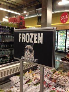 Frozen Grumpy Cat