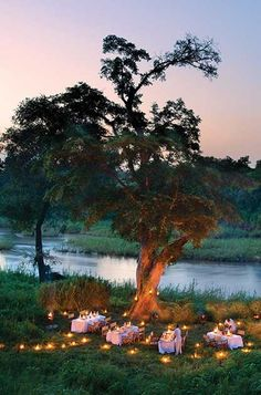 Taleslikethese.com loves this! Narina, a Luxury Lodge secluded in the trees of the Kruger National Park