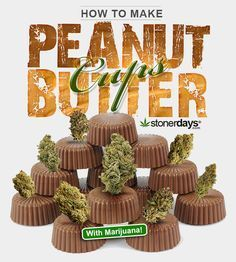 How to make Marijuana Peanut Butter Cups: Smooth creamy chocolate and peanut butter are a match made in heaven, and when you're in the mood for sweet treats and a nice high, this recipe is exactly