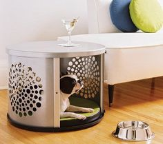 Creative Dog Bed Ideas You and Your Furry Friend will Love! 6 - https://www.facebook.com/different.solutions.page