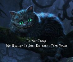 I'm not crazy, my reality is just different than yours...