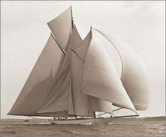 sailboat by Qui Roberto
