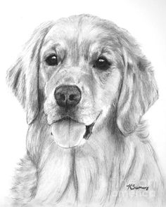 Golden retriever art on Pinterest | Golden Retrievers, Dog Art and ...
