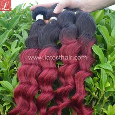 #1b/bug,black burgundy ombre hair weaves, loose wave two tone human hair,shop from www.latesthair.com/ Indian Hairstyles, Weave Hairstyles, Blond, Ombre Hair Weave, Ombre Human Hair Extensions, Hair Shop, Peruvian Hair, Love Hair, Human Hair Wigs