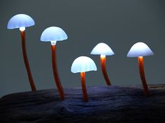 Amazing LED mushroom lamps turn your home into a fairytale forest