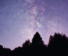"""Ein unvergesslicher Anblick: Unzählige Sterne bilden diese """"Wolken"""" am klaren Nachthimmel über dem Nationalpark Eifel. <br /> <small>Bild: Harald Bardenhagen</small>"""