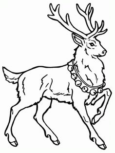 free animals gazelle printable colouring pages for preschool