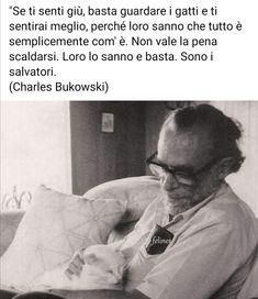 Charles Bukowski, King, Mood, Romanticism, Home, Book