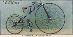 Lawson's