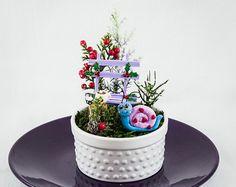 Darling Little Cup Christmas Fairy Garden,Delightfully Decorated Fairy Garden,Mini Cup Garden,Fairy Christmas,Fairy Accessories,Faerie Decor
