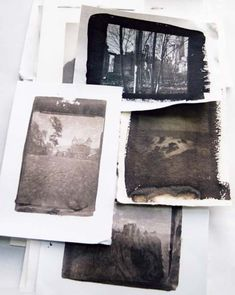 Van Dyke prints, printed by Norma Thallon at Hospitalfield House  -  2003