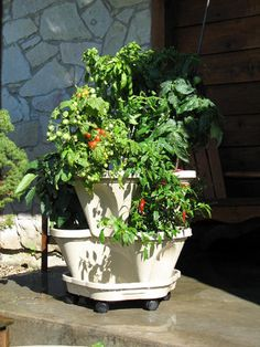 Garden Supply™ StackingPots - Hydroponics, Vertical Gardening, Commercial Growing Systems, High Density Production, Hydroponic Fertilizers and Nutrients