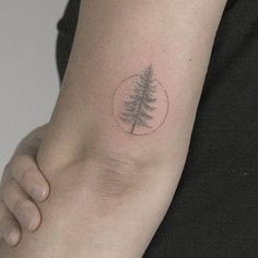 Absolutely in love with this. I've loved pine trees my whole life and the simplicity of this tattoo captures that.