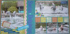 Swim with Dolphins at Key Largo Florida    ABC Challenge: A= Animal